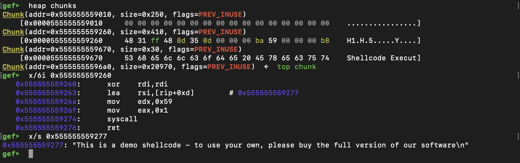 demo_shellcode